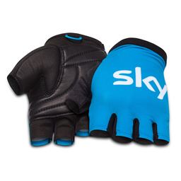 Team Sky Classic Mitts