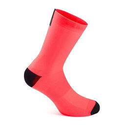 Pro Team Socks - Long