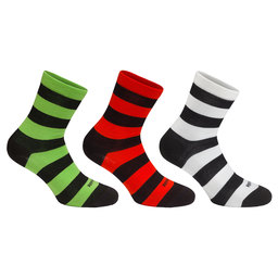 Brevet Socks Bundle