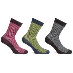 Lightweight Merino Sock - Stripe Bundle